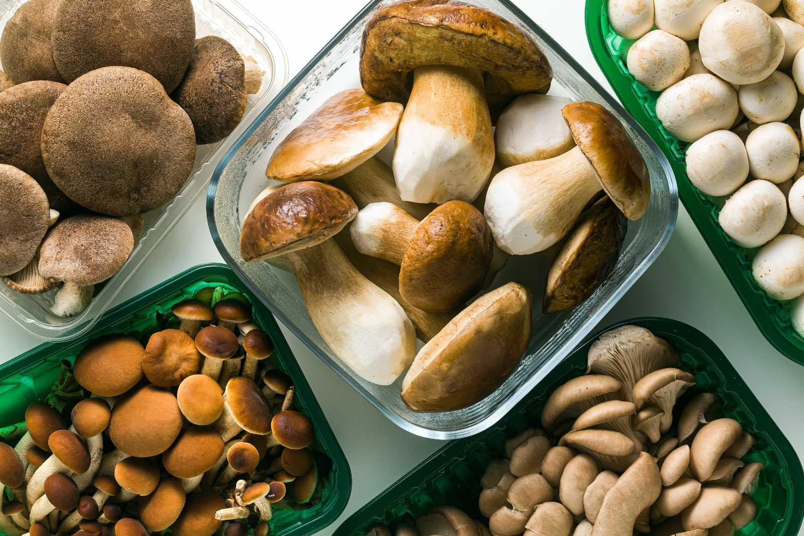Gombák tartalmaznak d-vitamint