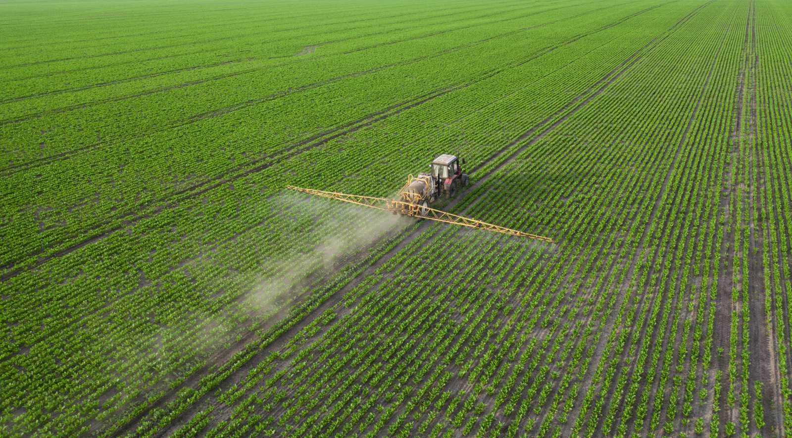 szántás pusztítja a talaj mikroorganizmusait